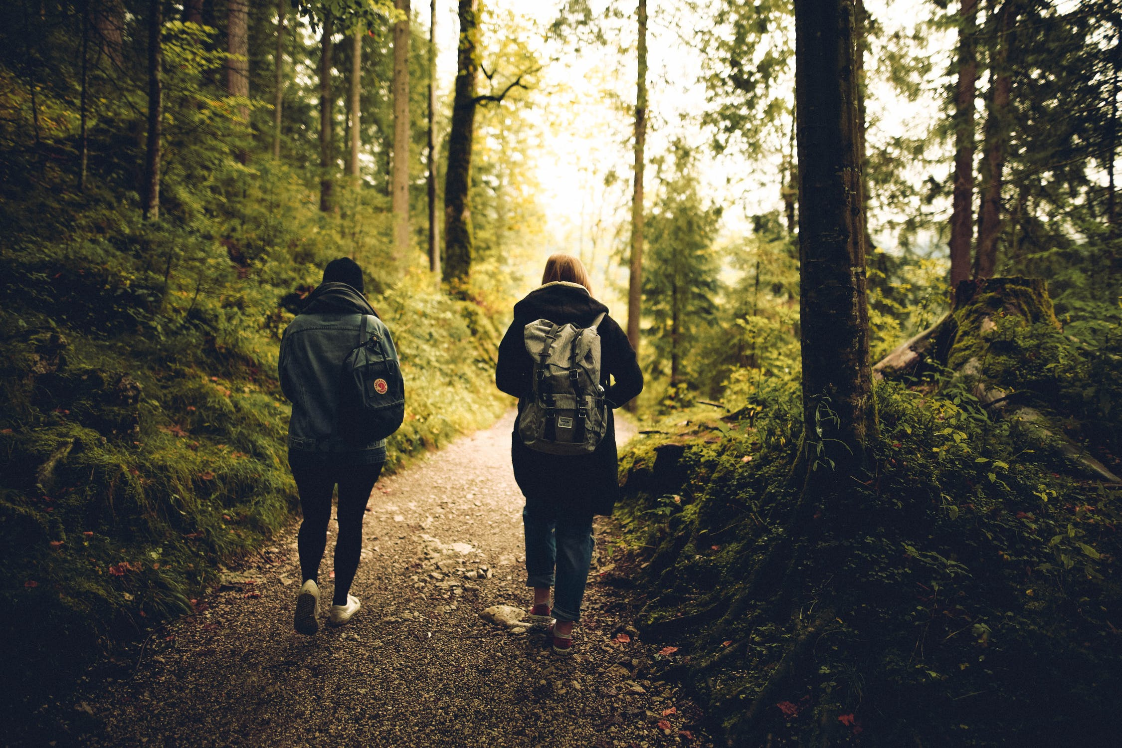 Two people with backpacks walking through lush green woods